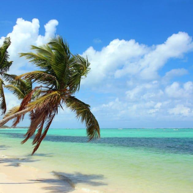 Hotels in Punta cana